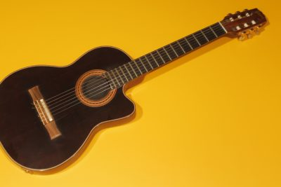 Gibson Chet Atkins CEC